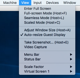 virtualbox_auto_resize_guest_display